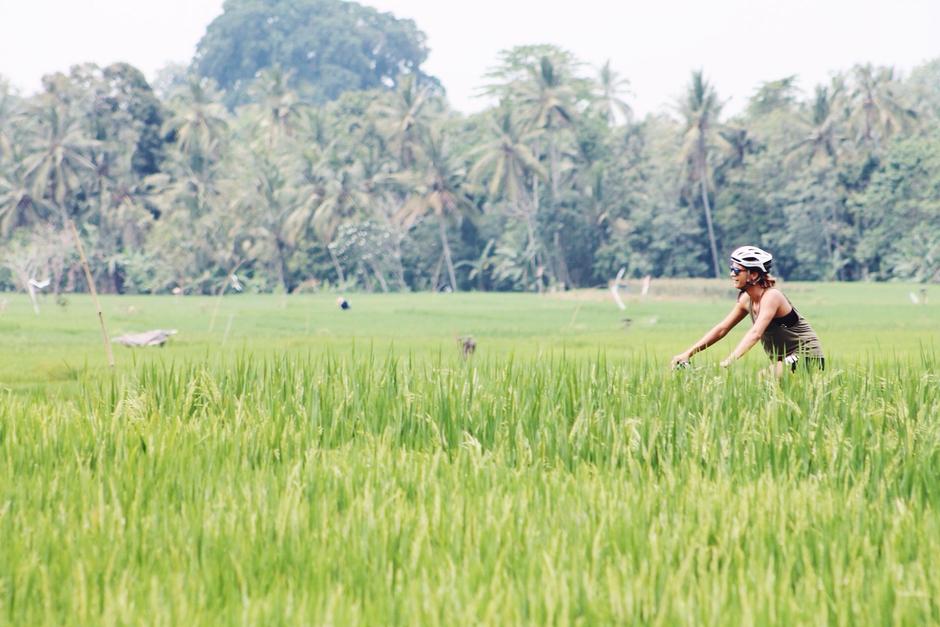 Mountainbike daisy, jatiluwih, retreat, activiteiten in ubud