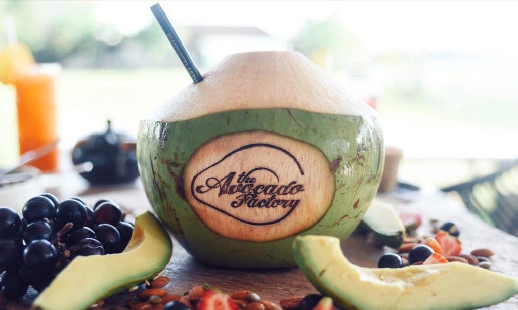 hotspots in canggu, the avocado factory canggu bali